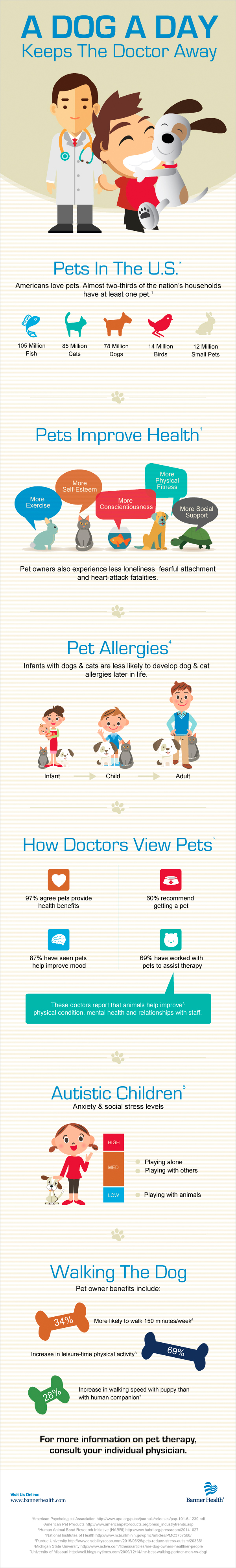 Pet Therapy Infographic